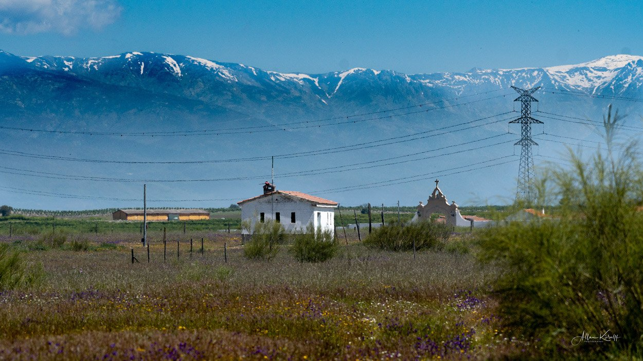 Fugle-i-Extremadura-Landskab