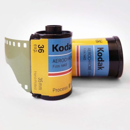 Kodak Aerochrome pellicola infrarosso