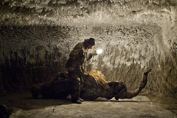 Mammoth Hunters Evgenia Arbugaeva mammut cacciatori siberia