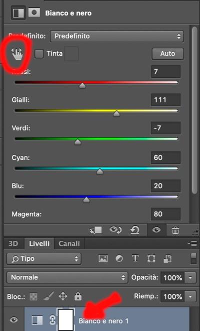 livello regolazione bianco e nero photoshop conversione immagine foto copia