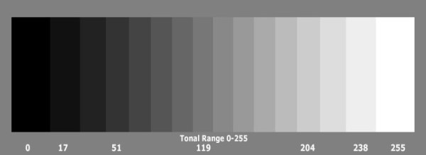scala dei grigi da nero a bianco fotografia in bianco e nero