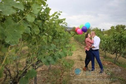 sesion-de-fotos-en-villa-de-leyva-fotografias-de-parejas-fotos-de-pre-boda-viñedo