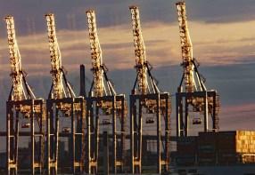Kräne im Hamburger Hafen im Abendlicht