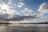 Einsetzende Ebbe auf der Elbe