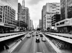 Paulista - SP