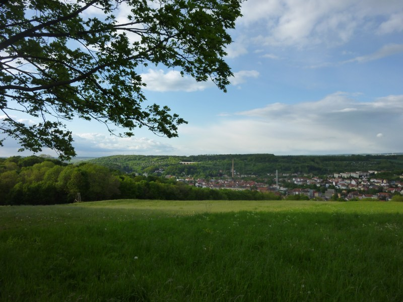 P1060781 Urlaub im Thüringer Wald