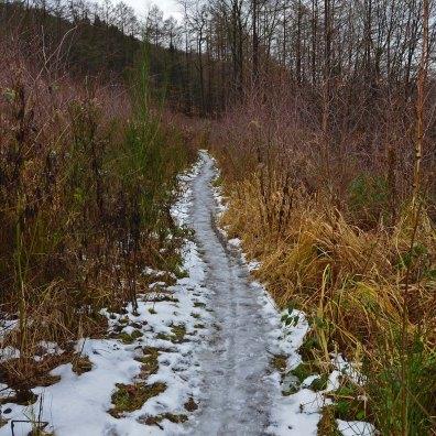 Eisweg