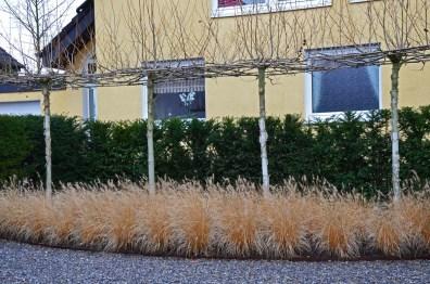 2012 12 15_0450_bearbeitet-1