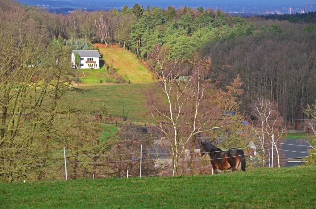 2012 12 15_0458_bearbeitet-1