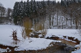 EifgenbachwanderungimSchnee (77) - Kopie