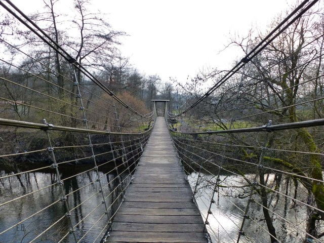 Ehreshoven-Hohkeppel (57)