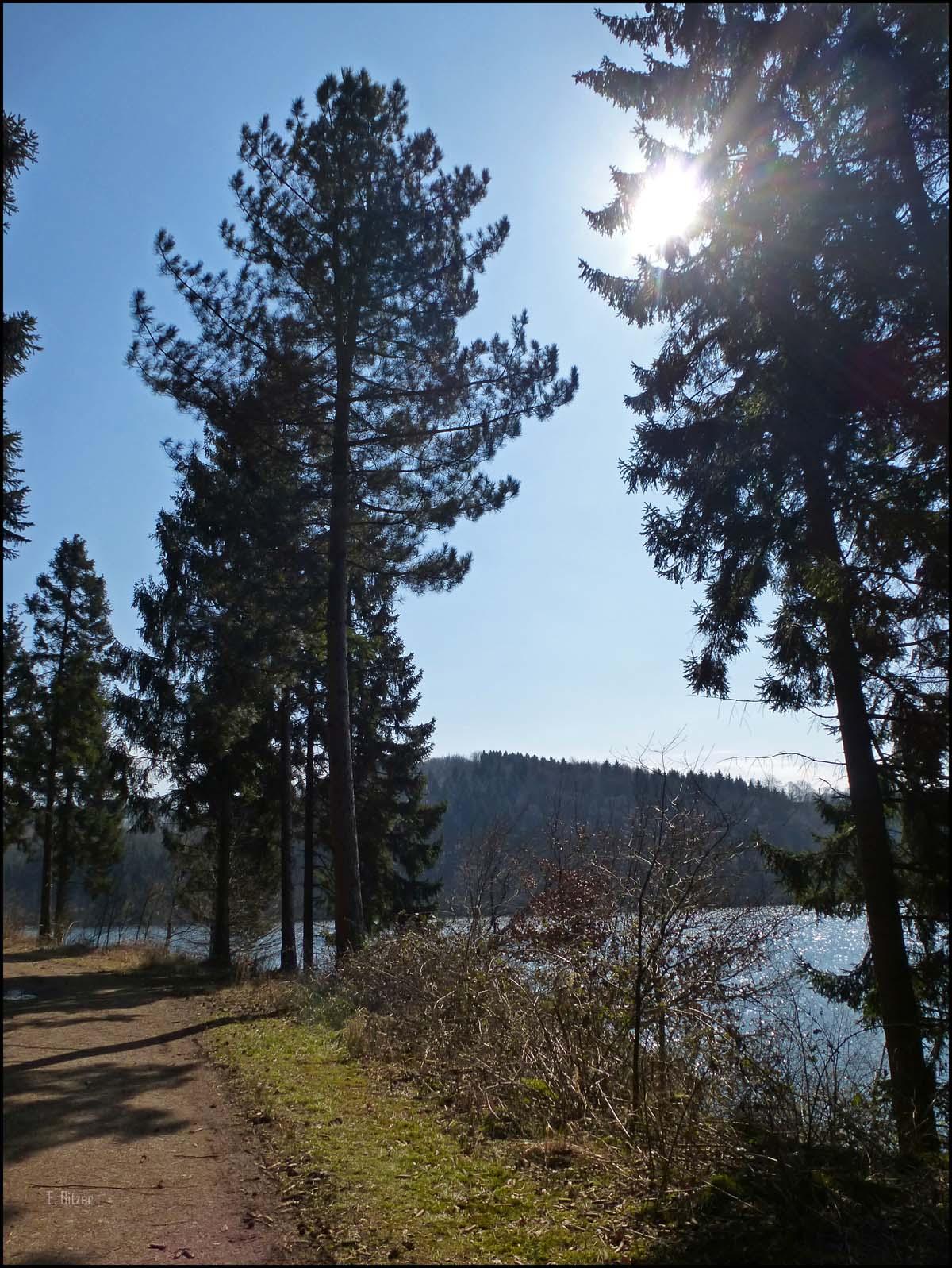 Die Sonne strahlt auf die Waldwege an der Talsperre