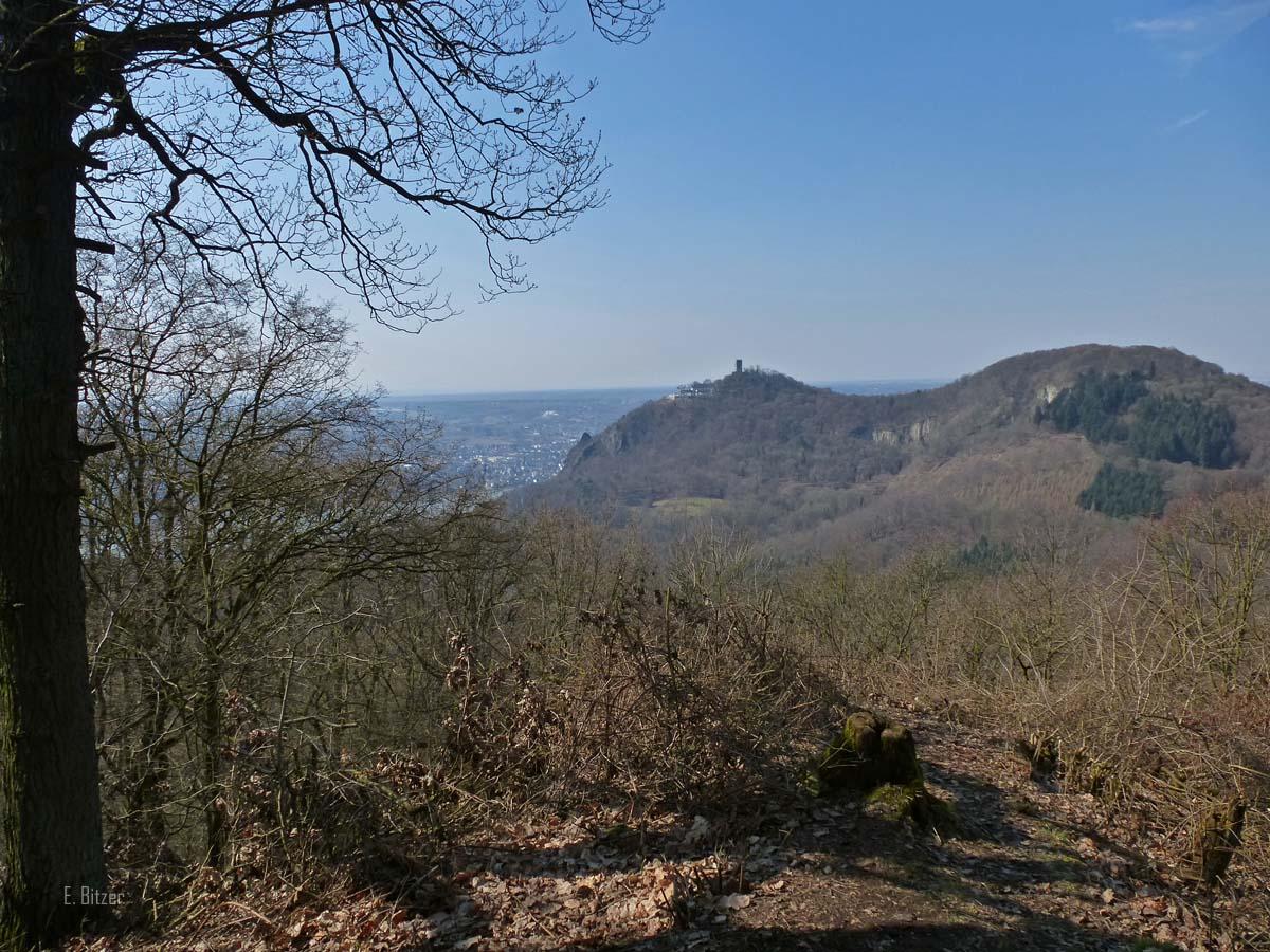 Siebengebirgeblick