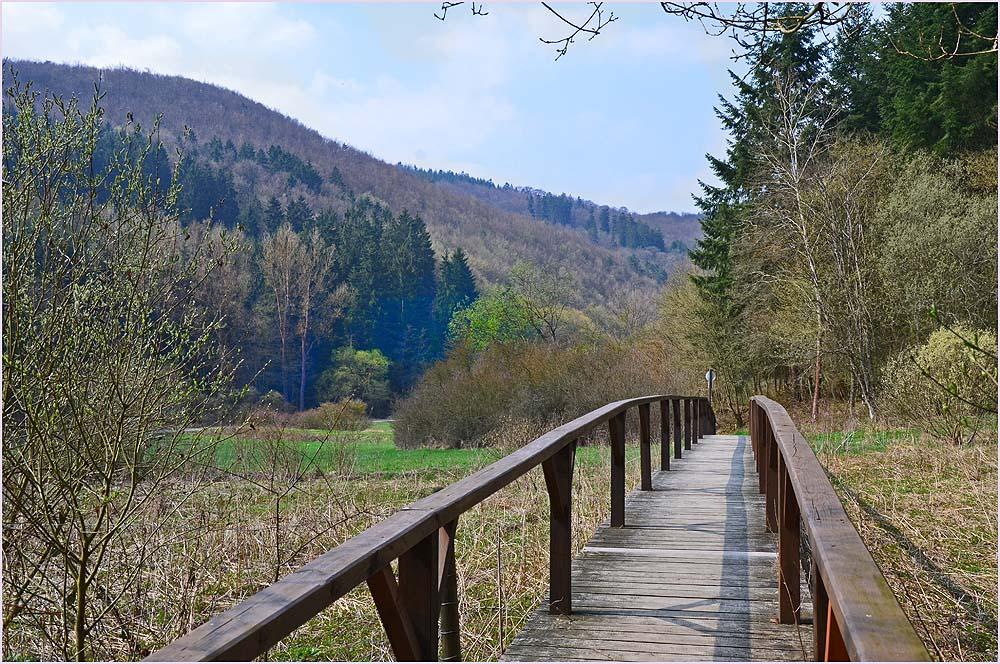 Holzsteg über einem Biotop -Das Sahrbachtal - Ein Wanderparadies