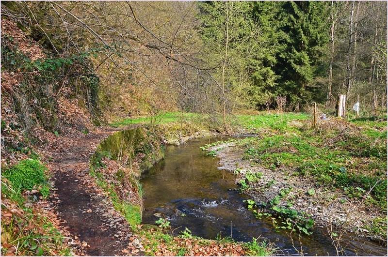 Der Sahrbach mündet hier in Kreusberg in die Ahr