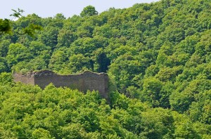 Die Rauschenburg liegt 250 m ü. NN, oberhalb des Ehrbachs.