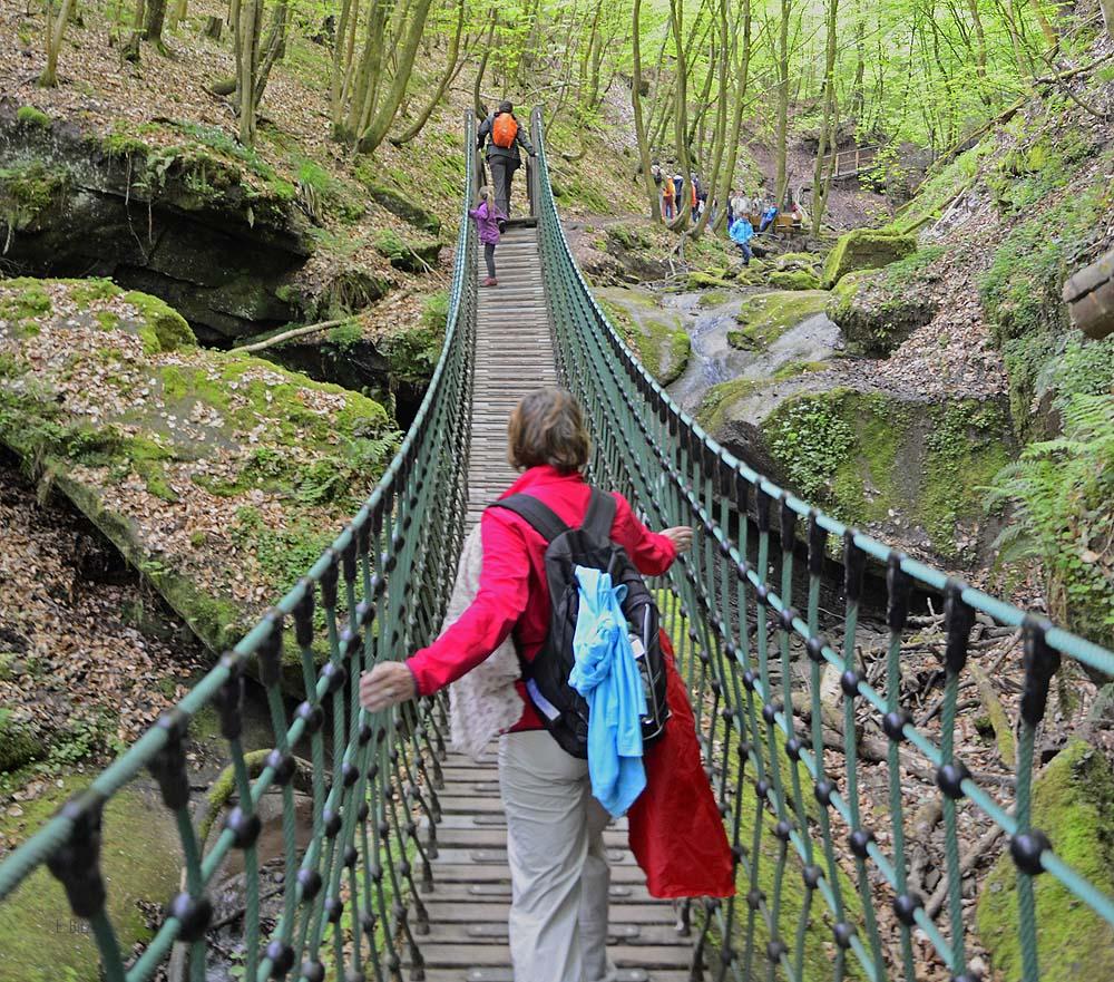 Hängebrücke im Butzerbachtal