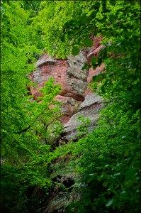 Kasteler Felsenpfad (15)