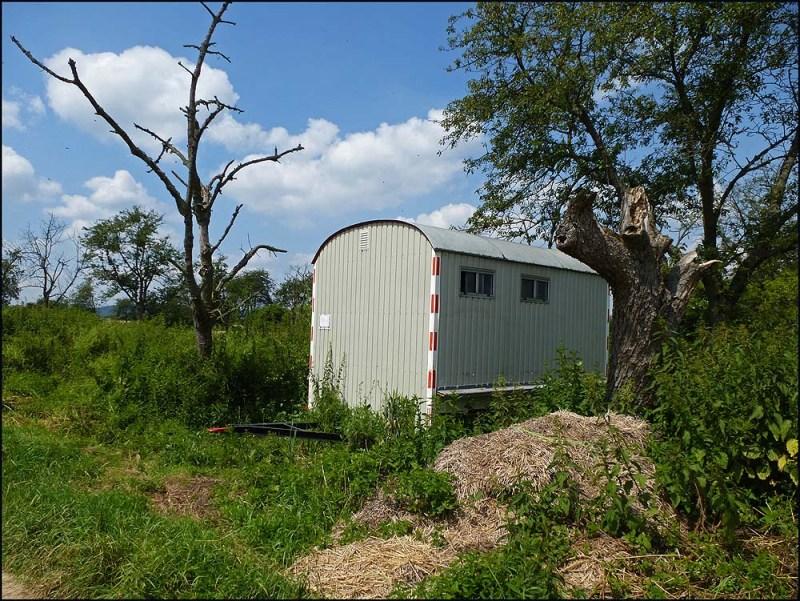 Eine eigenwillige Art Bienenhäuser zu gestalten. Hier wimmelt es nur so von den fleißigen Sammlerinnen