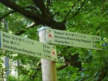 Rheingoldbogen (45)_bearbeitet-1