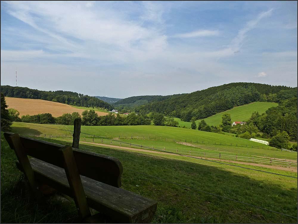 Felderbachtal (20)