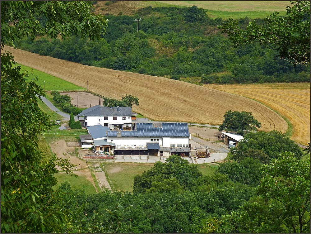 Hier erhasche ic h den ersten Blick auf den Nettehof, einen Reiterhof zwischen Trimbs und Hausen. Dort hinunter führt mein Weg.