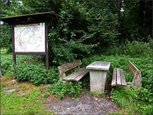 Waldschluchtenpfad (68)