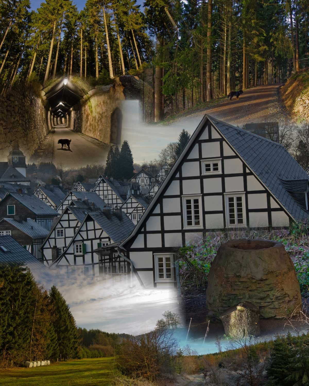 Collage Freudenberg