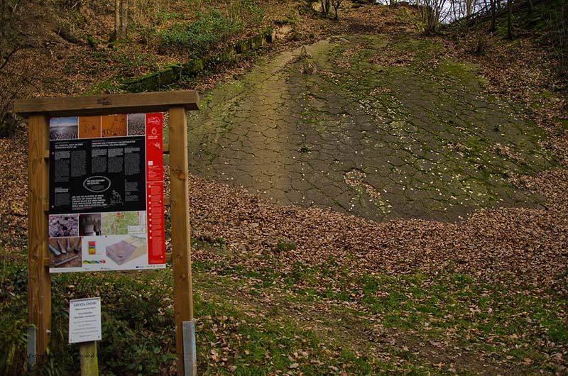 Grafen_und Moenchsweg (115)