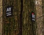 Grafen_und Moenchsweg (17)