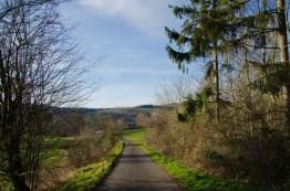 KlosterSteinfeldetc (12)