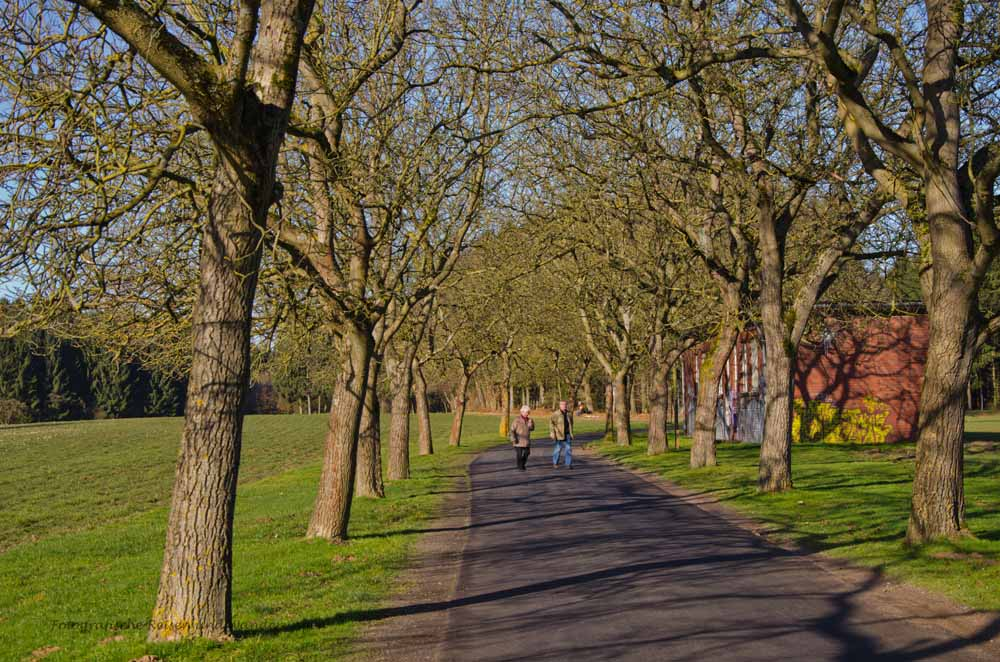 Moenchweg (76)