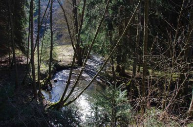 Oberes_Baybachtal (107)
