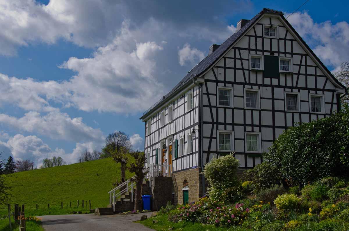 Mühlen und Bäche im Eifgenbachtal (114)