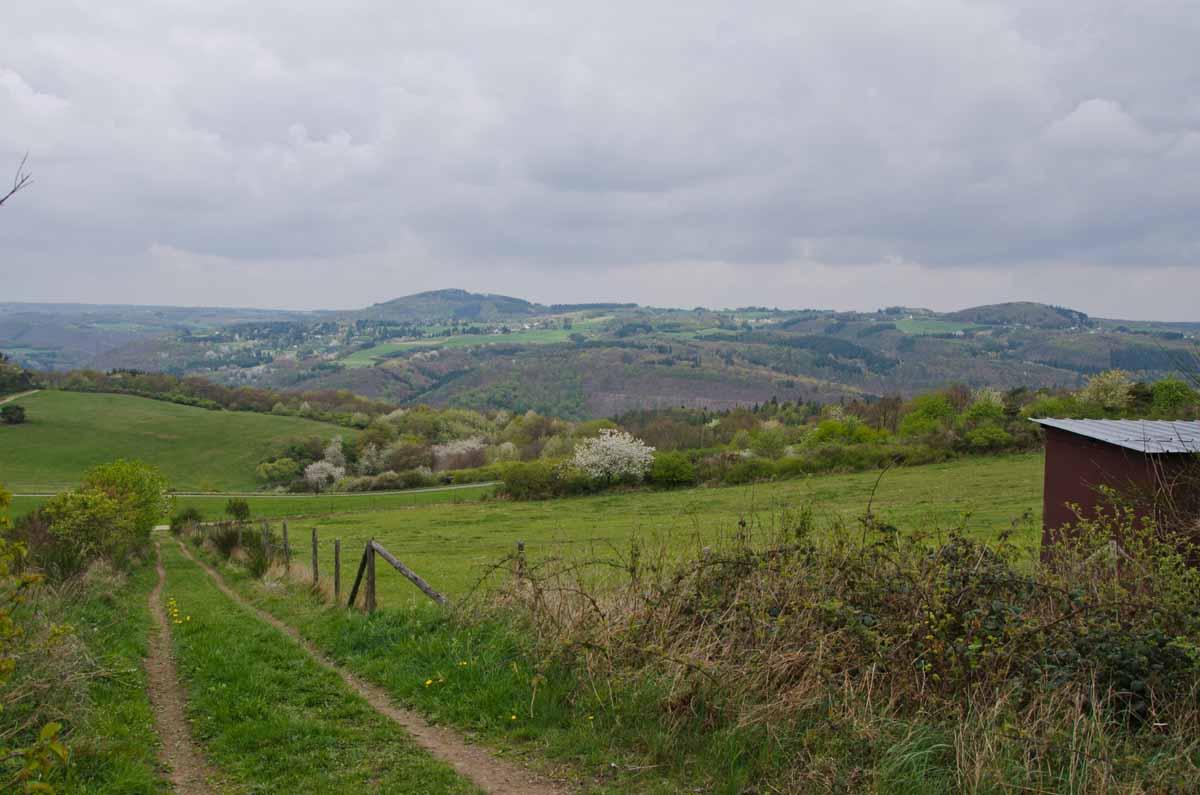 PanoramawegLind (5)