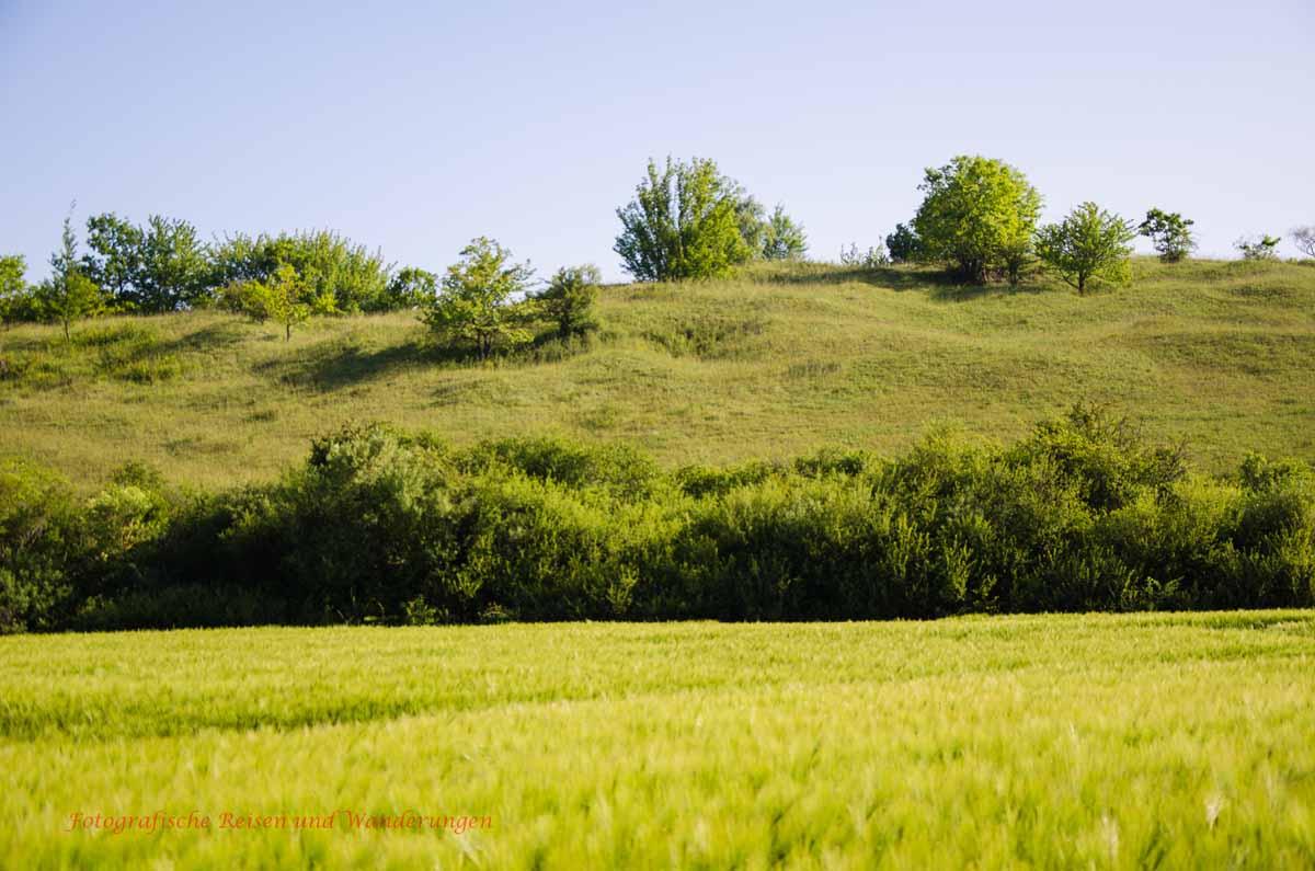 Naturschutzgebiete Zülpicher Börde