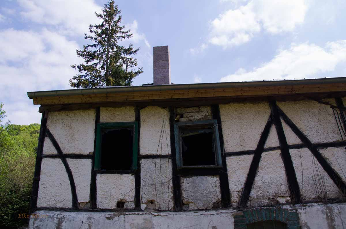 HümmelPitscheidArmutsbachtal_0198