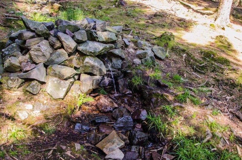 Der Jungbrunnen Ich habe nicht getestet ob ich durch das Wasser ewige Jugend erhalte, Spike hat es versucht.