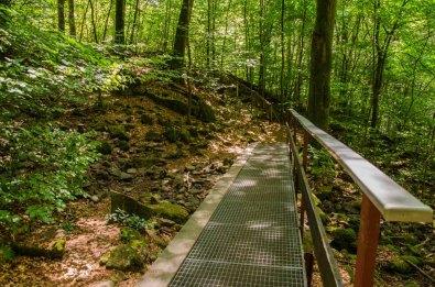 Wildromantische Holzbachschlucht
