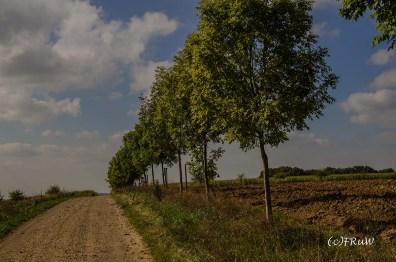 felsenweg_6-169