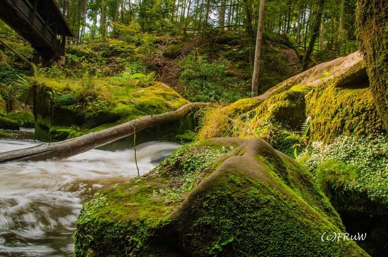 irrlerwasserfalle-17