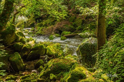 irrlerwasserfalle-26
