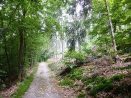 Auf dem Sonnwaldsteig unterwegs nach Schloß Wartenstein