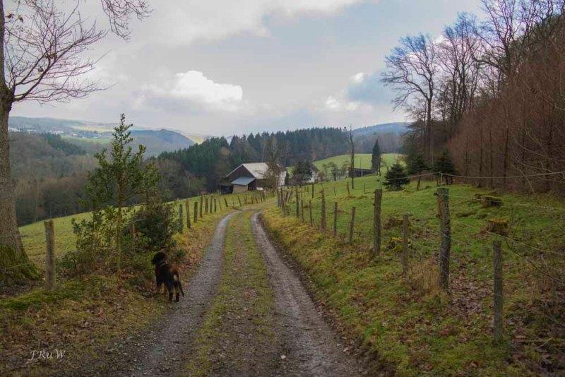 Lindlar_Bergische Schweiz_0034