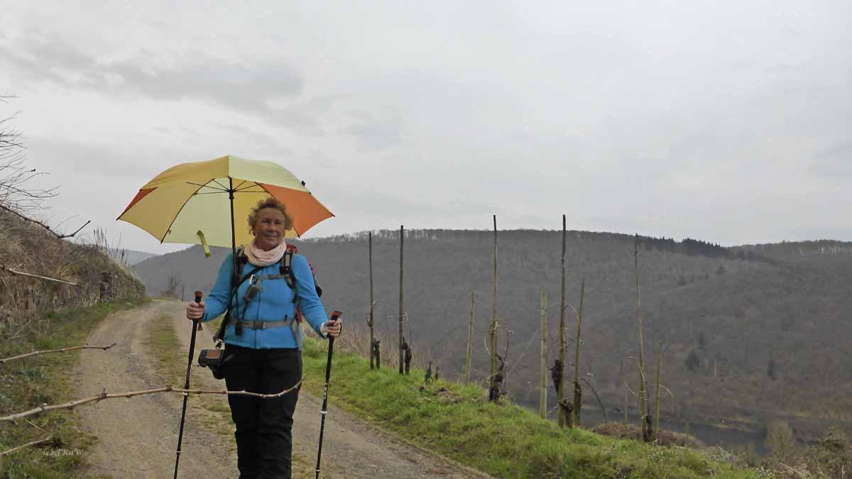 Wanderstöcke und Trekkingschirm