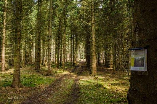 Eifelrunde_NAE-Nöthen_0173