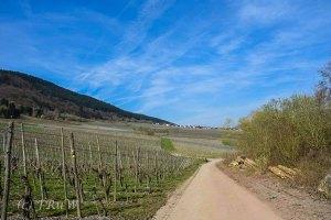 Mehringer Schweiz_Tag 1 (64)