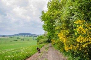 Landesblick_Wolfsschlucht_Krater_0599