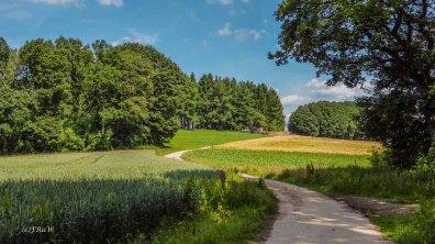 Eifgenbachrunde moderat_0398