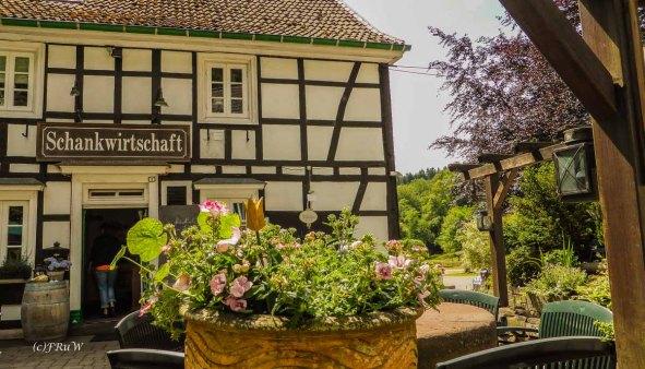 Eifgenbachrunde moderat_0435